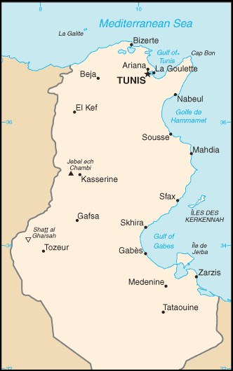 tunézia térkép Tunézia térképe   Travelon.hu